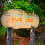 Pengaruh Belajar Proses Pembelajaran Online Terhadap Study Mahasiswa di STFT Fajar Timur Abepura-Papua