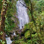 Kontradiksi Kekayaan Alam Papua dan Kehidupan Masyarakatnya